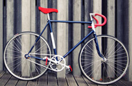 "Fixed gear ""Allez!"""