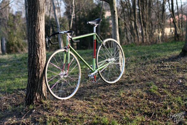 singlespeed bicycle biascagne