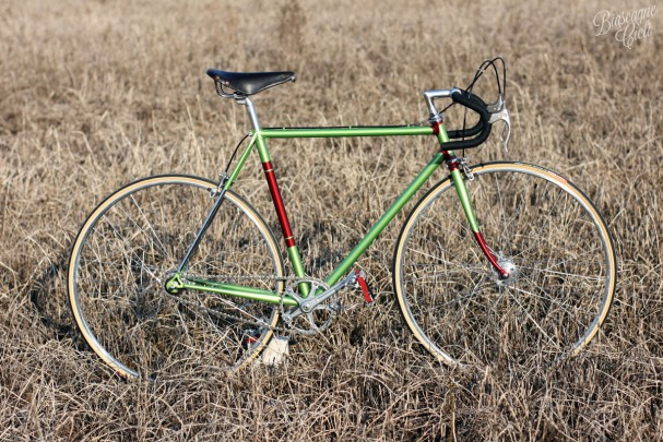 bici singlespeed